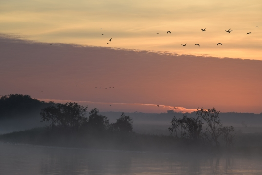 Sunrise in Kakadu